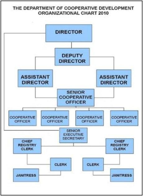Organisation Chart Department Of Cooperative Development